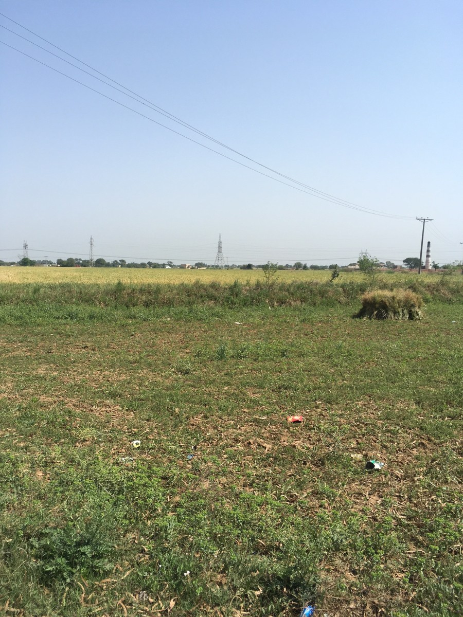 Agriculture Land for Sale in Jand District Attock